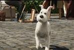 EventGalleryImage_Tintinas 4.jpg